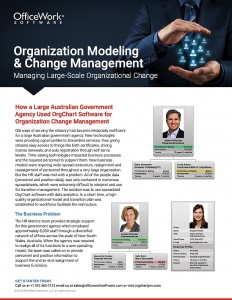 Cover of Organization Modeling and Change Management Case Study